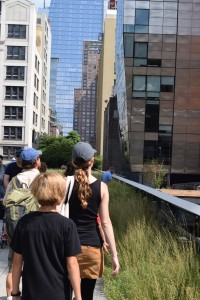 Perusing the High Line