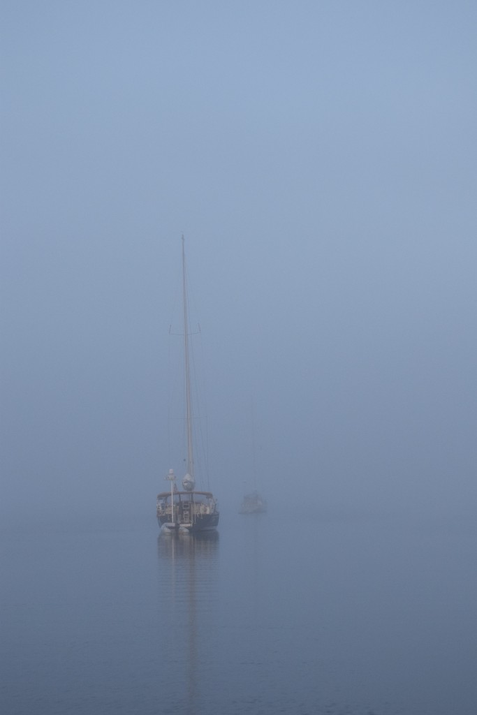 Foggy morning in Back River