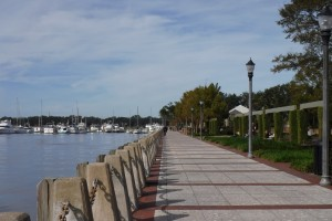 Waterfront in Beaufort, SC. Do not be fooled by the palm trees; it is not warm