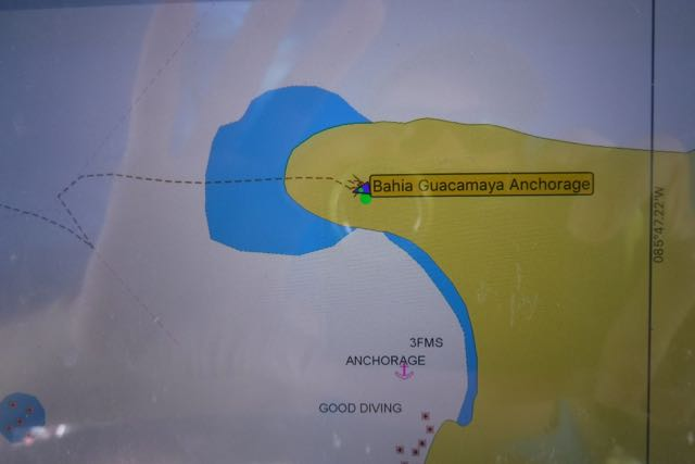 The yellow stuff is supposed to be land; the dotted line is our path entering the bay. Note the sharp turn; that's where we almost hit s pile of rocks