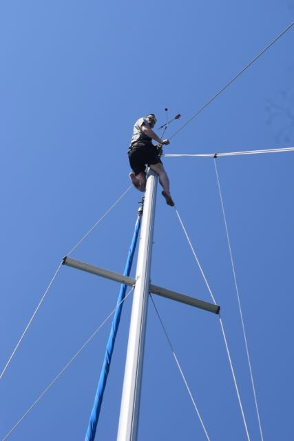 Uncle Tay-tay is an arborist, so obviously we sent him up the mast to look for whales.